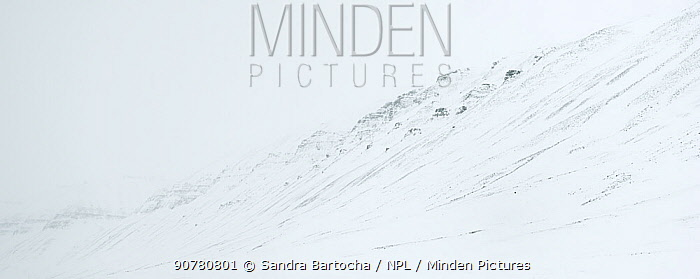 Snowy mountainside, Bolterdalen, Svalbard, Norway, April 2014.