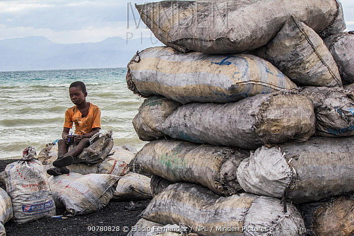 Child selling bags of charcoal bags north of Port-Au-Prince, Haiti.