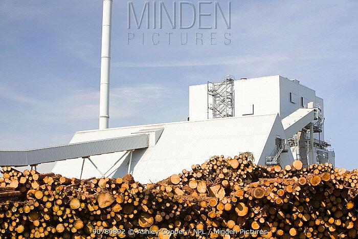 The Steven's Croft biofuel power station in Lockerbie, Scotland, UK.