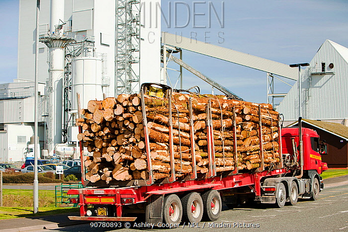 The Steven's Croft biofuel power station in Lockerbie, Scotland, UK, witha delivery of timber entering the site.
