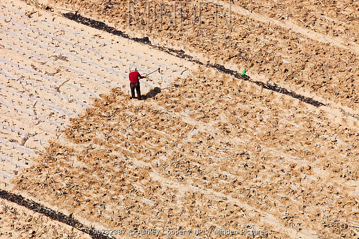 Aerial view of farmers working in fields during severe drought, Shanxi province, China. March 2009.