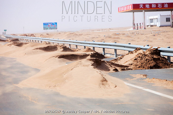 Sand dunes spreading across highway during severe drought,  Inner Mongolia, China. March 2009.