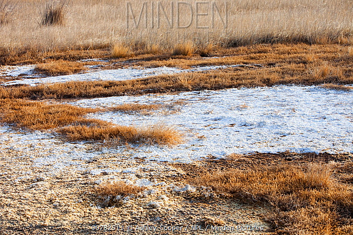 Hong Hai Zai  lake completely dried up during severe drought, Inner Mongolia, China. March 2009.