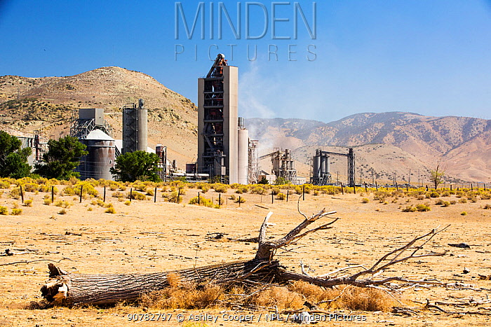 Cement works at Tehachapi Pass California, USA, September 2014. During drought drought killed trees in the foreground. Cement production is one of the most carbon hungry industries on the planet, driving climate change and leading to drought.