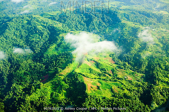 Aerial view of rainforest and mountains on Fiji. March 2007.