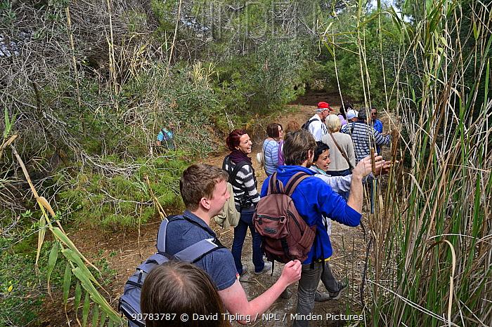 Tour of BirdLife Malta's Ghadira Nature Reserve,  during BirdLife Malta Springwatch Camp, Malta, April 2013