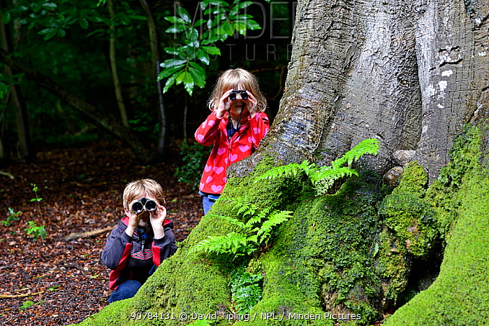 Young brother and sister bird watching in woodland in summer, Norfolk. July 2012. Model Released Model released.