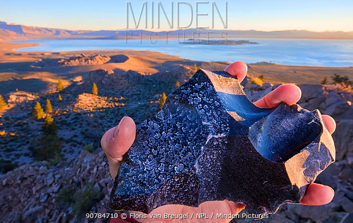 Piece of obsidian,  sprayed with water from the Pacific ocean (right)  and  with high mineral content water from Mono Lake (left) . Mono lake is three times saltier than the Pacific Ocean, and highly alkaline (pH=10). Mono Lake, California, USA. June.