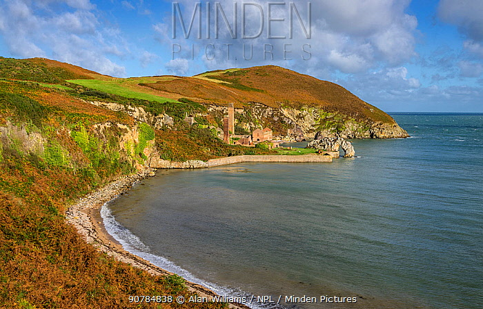Porth Wen bay showing the ruins of the abandoned Porth Wen Brickworks, north coast of Anglesey, North Wales, UK, October 2017.