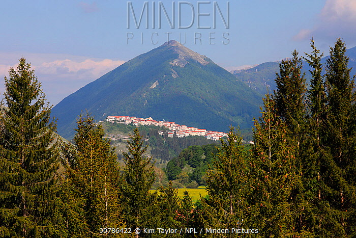 The village of Opi, Apennine mountains, Apennines, Italy, May.
