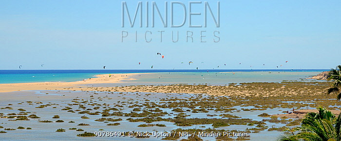 Sotavento lagoon and kite surfers, near Jandia, Fuerteventura, Canary Isalnds, May.