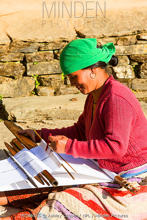 Nepalese woman in traditional clothing weaving cloth on a hand loom in the Himalayan foothills, Nepal. January 2013.