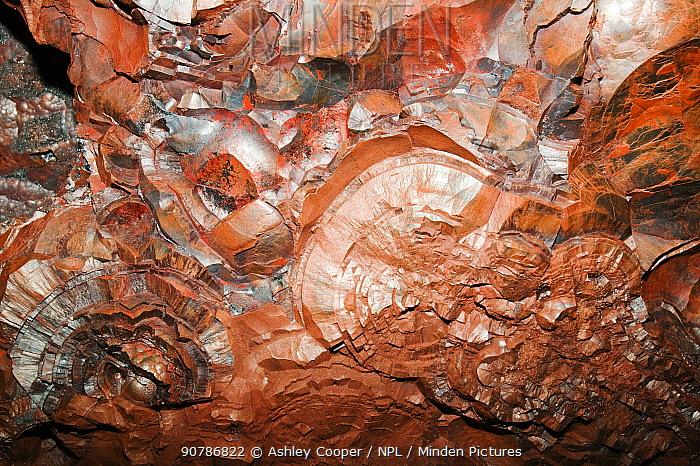 Kidney ore of haematite at Florence haematite mine near Egremont West Cumbria, England, UK, July.