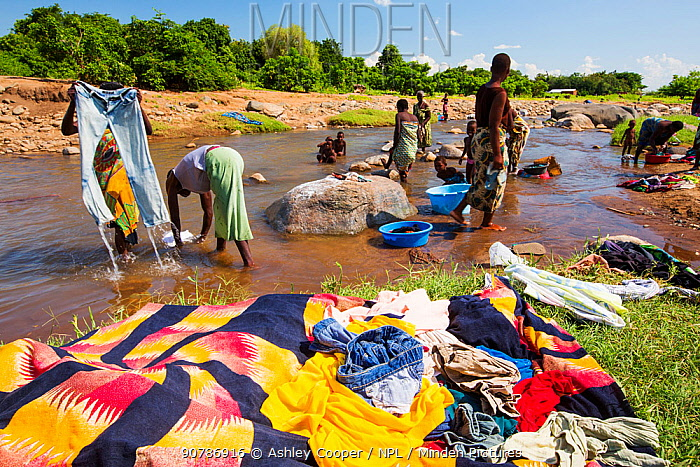 Women washing clothes in a river near Chikwawa in the Shire Valley, Malawi.