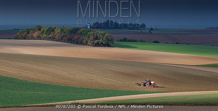 Tractor ploughing field, Pleine Selve, Picardy, France, October 2016.