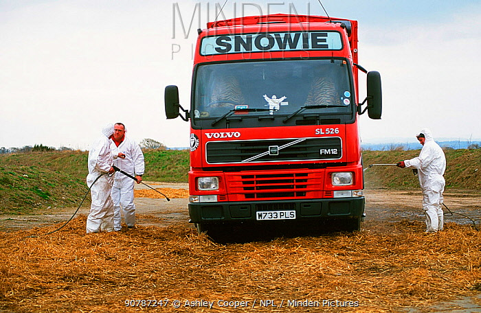 Lorry is disinfected after dropping off slaughtered carcasses of animals with Foot and Mouth Desease at the mass grave site at Orton in Cumbria, England, UK. 2001.