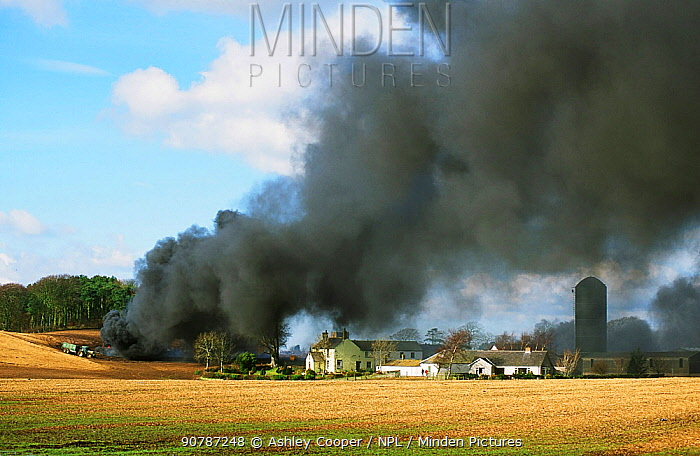 A funeral pyre burning animals infected with Foot and Mouth Desease near Longtown in Cumbria, England. UK. 2001.