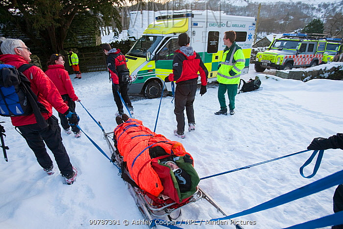 Paramedics and Mountain Rescue team members evacuate an injured walker who had fallen and injured his back, Langdale Valley, Lake District, England, UK. January 2010