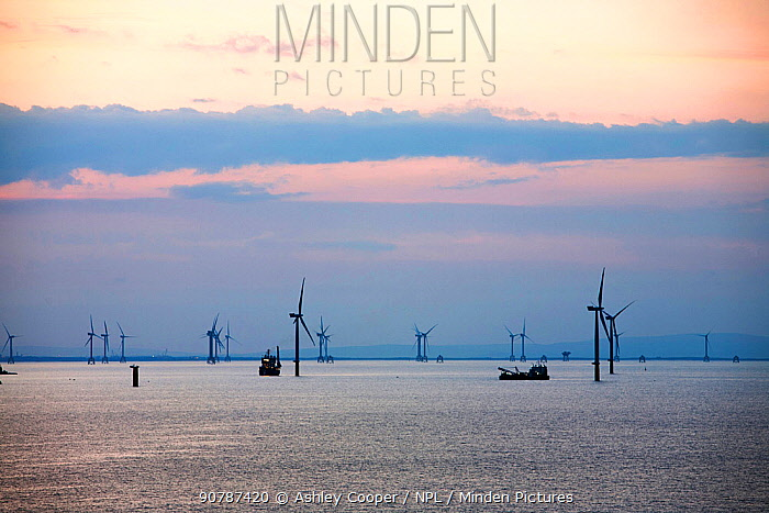 Boats working on the construction of the Walney offshore windfarm at dawn, Cumbria, UK. July 2011