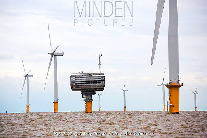 Gunfleet Sands offshore wind farm, including the sub station is owned and operated by Dong energy. Brightling Sea, Essex, UK. September 2015