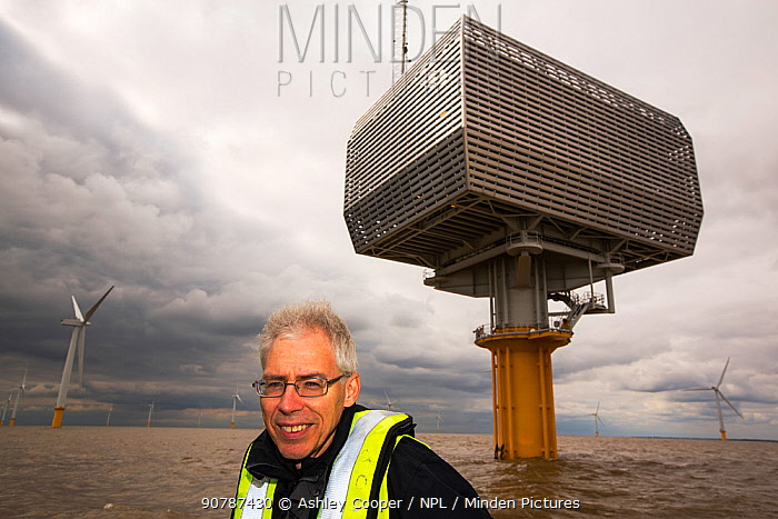 Doug Parr, chief scientist for Greenpeace UK, at Gunfleet Sands offshore wind farm which  is owned and operated by Dong energy. Brightling Sea, Essex, UK. September 2015
