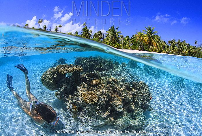 Woman snorkeller swimming inside lagoon Toau atoll, Tuamotu Archipelago, French Polynesia, Pacific Ocean.