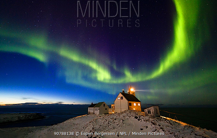 Aurora borealis over Hornoya lighthouse. Hornoya, Norway, March.