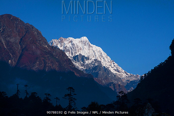 Snow-capped mountains, Sikkim, India. October 2008.
