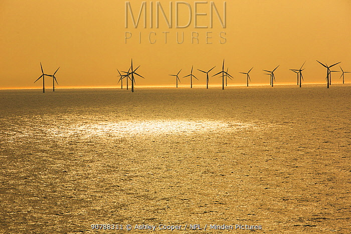 Offshore wind farm in Dutch waters an hours sailing from Ijmuiden, Netherlands. May 2013