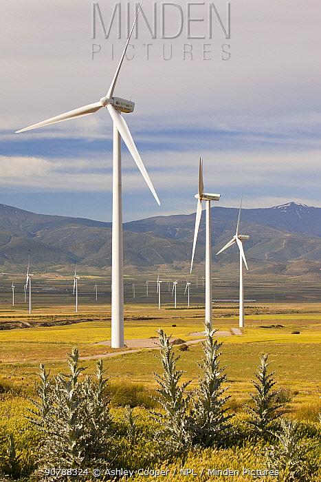 A wind farm near La Calahorra in Andalucia, Spain. May 2011