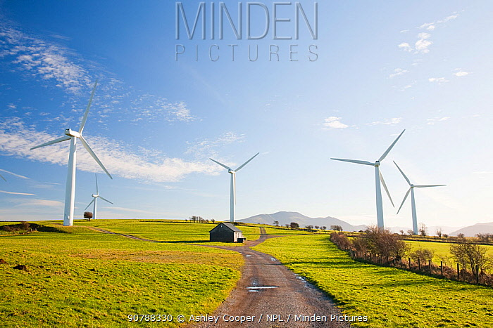 A wind farm on the outskirts of the Lake District with Skiddaw behind, Cumbria, UK. December 2009