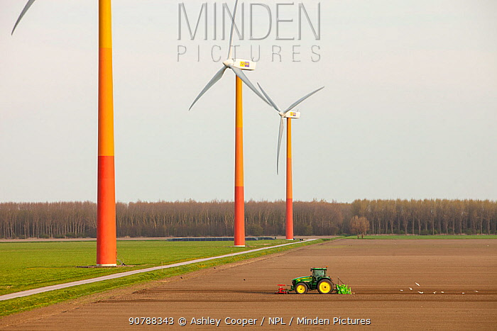 Colourful wind turbines in polders, reclaimed land near Almere, Flevoland, Netherlands. May 2013