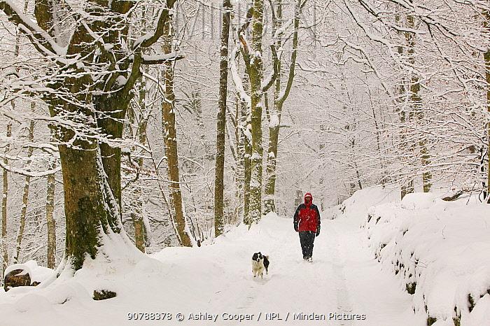 Women walking the dog in heavy snow near Ambleside, England, UK. March 2006