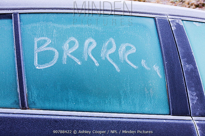'Brrrrrr' written on a car window in the frost, Ambleside, Cumbria UK. December 2008
