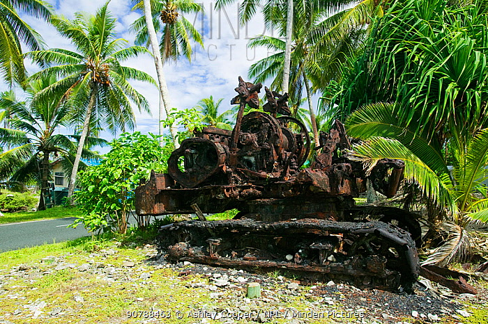 American tank left during the second world war on Funafuti Atoll, Tuvalu. March 2007