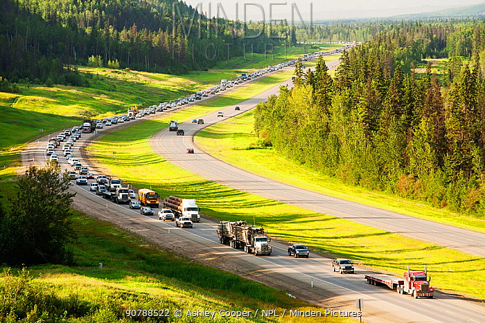 Traffic on Highway 63 through boreal forest, Alberta, Canada, August.