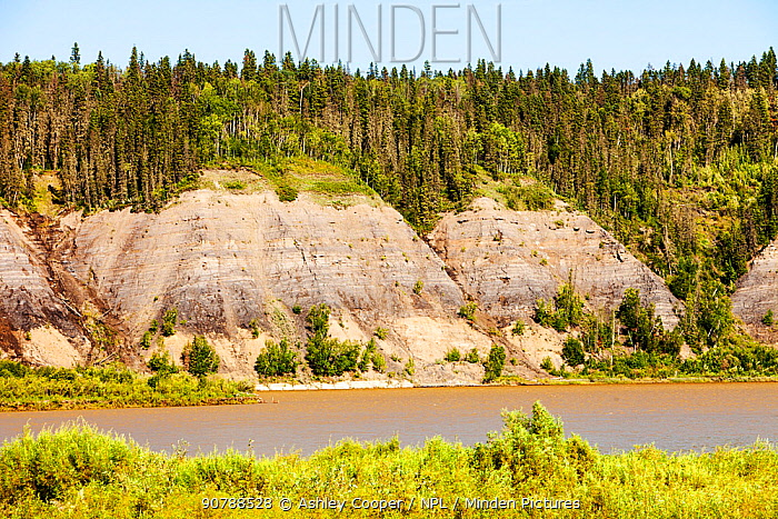 Tar sands deposits exposed in the side of the Athabasca River, Fort McMurray, Alberta, Canada. August 2012