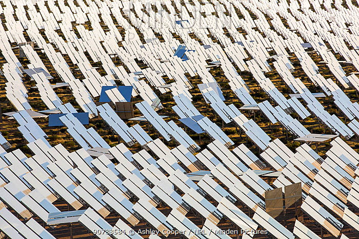 Heliostats reflecting sunlight onto solar tower at Ivanpah Solar Thermal Power Plant, the largest solar thermal plant in the world. It covers 4,000 acres of desert and produce 392 megawatts (MW) of electricity. Mojave Desert, California, USA. September 2014