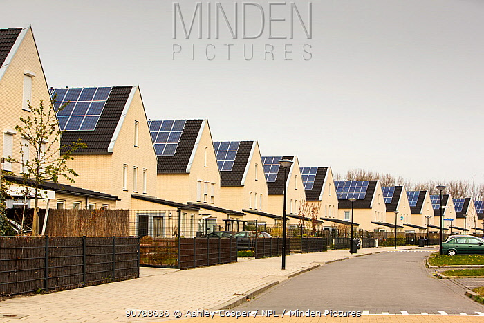 Sun city a suberb of Heerhugowaard in the Netherlands that has develped as a solar hot spot, with the majority of the houses powered by solar panels and is the largest CO2-neutral residential area in the world. The City of the Sun generates 10 MW of energy from wind and solar power, and uses natural water-filtration systems. May 2013