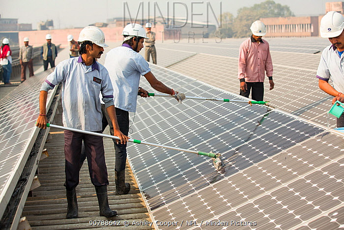 Workers washing dust off solar panels at station run by Tata power on the roof of an electricity company in Delhi, India, to make them more efficient. December 2013