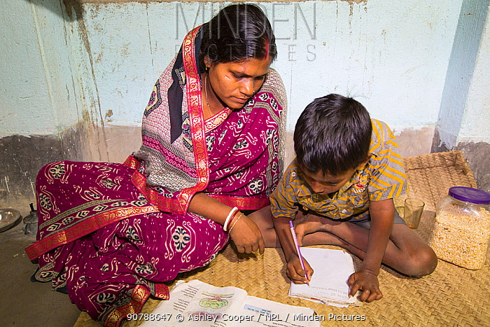 Young boy doing homework in house lit by electricity from battery. Batteries are solar charged from WWF project to supply electricity to a remote island in the Sunderbans, Ganges Delta, India. December 2013