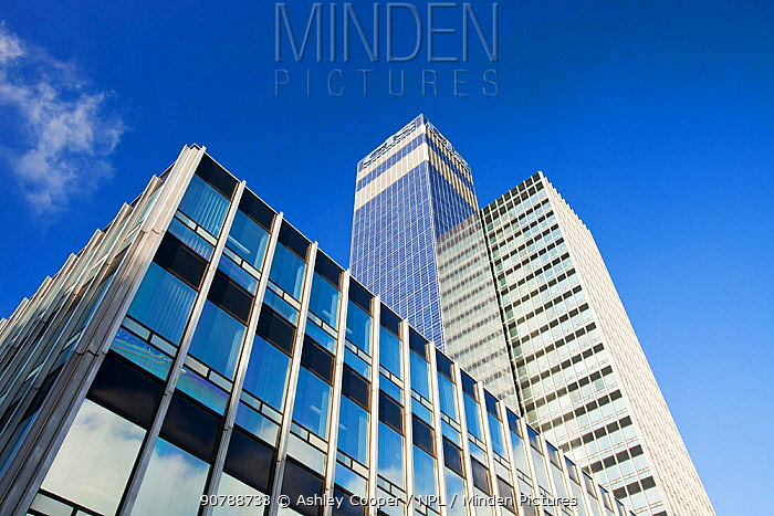Cooperative CIS Tower in Manchester, England, UK. The tower has been covered in 7000 Solar panels and generates enough green electricity to power 55 homes, or 180, 000 Kw hours per year. November 2011
