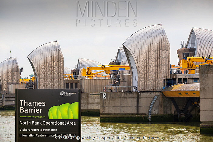 The Thames barrier on the River Thames in London. It was constructed to protect the capital city from storm surge flooding. England, UK, June 2014