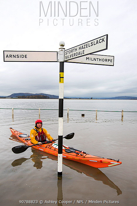 Kayakers in the flood waters on the road at Storth, Kent Estuary in Cumbria, UK, during the January 2014 storm surge and high tides. January 2014