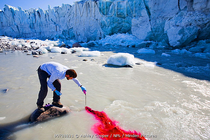 Scientist using dye tracing techniques as part of a study to measure the speed of the Russell Glacier, near Kangerlussuag Greenland. July 2008