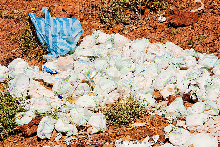Disposable nappies thrown away on the outskirts of the Berber village of Tamazight near Jebel Sirwa,  Anti Atlas mountains of Morocco, North Africa.  April 2012