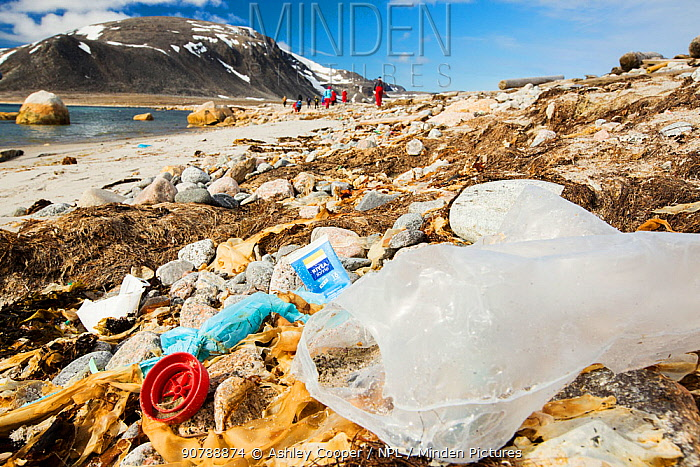 Plastic rubbish on a remote beach in Northern Svalbard, only about 600 miles from the North Pole. The plastic has been washed ashore from the sea by ocean currents. July 2013