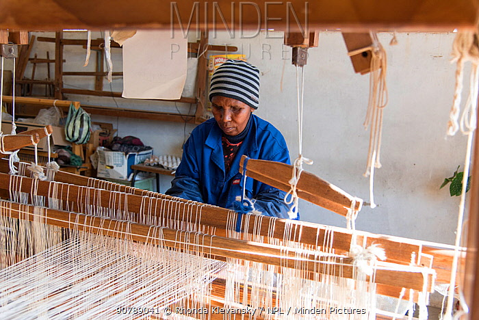 Weaver working mohair wool from Angora goats at Leribe Craft Center, Lesotho, July 2017.