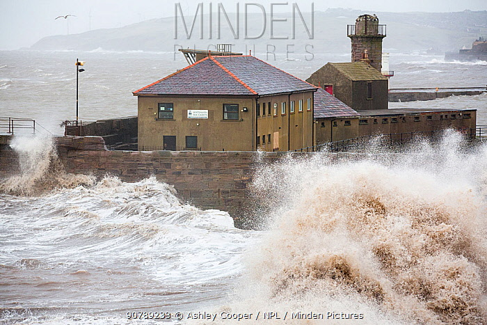 Whitehaven harbour during the January 2014 period of storm surge, high tides and storm force winds. The coastline took a battering, damaging the harbour wall and eroding a large section of coastal cliff. January 2014