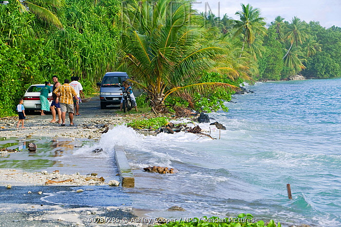 Tuvaluans watching as the high tide inundates their island home on Funafuti Atoll, Tuvalu. These low lying islands are very susceptible to sea level rise, March 2007